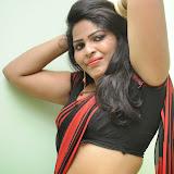 Sitara Hot Photos in Saree at Gundello Guchi Guchi Champake Movie Press Meet 24