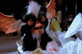 Where does band name Mogwai come from - Mogwai_mohawk - Gremlins