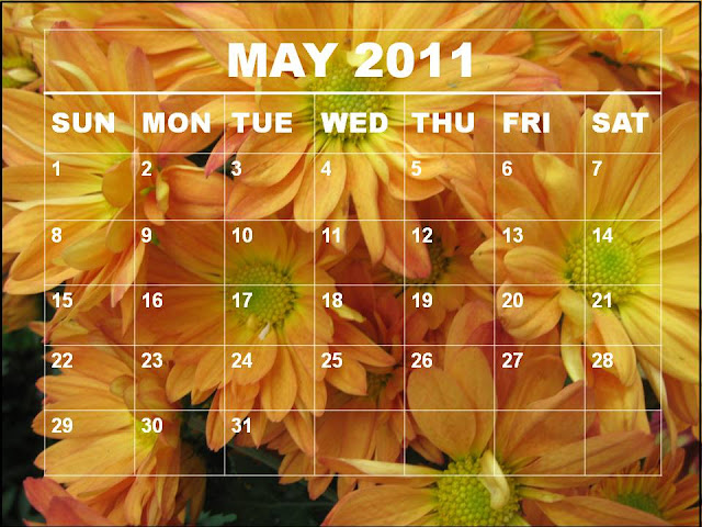 may calendar 2011 template. lank may calendar 2011.