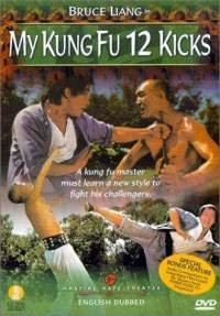 My Kung Fu 12 Kicks Hindi Dubbed Movie Watch Online
