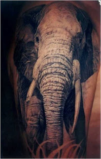pictures+of+the+best+tattoos+in+the+world+(17) Pictures of the best tattoos in the world