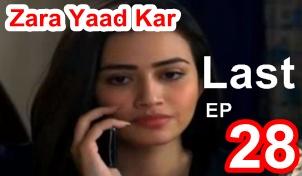 Zara Yaad Kar Last Episode