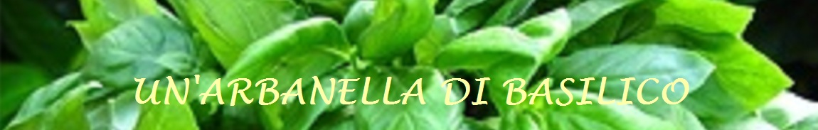un'arbanella di basilico