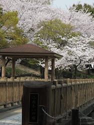 park toyoake-shi