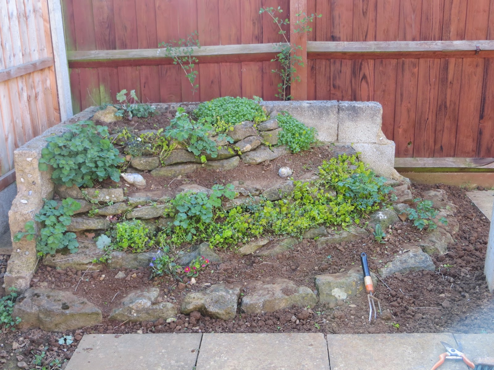 Rockery redo and a bit on the plot allotments 4 you for Garden design ideas rockery