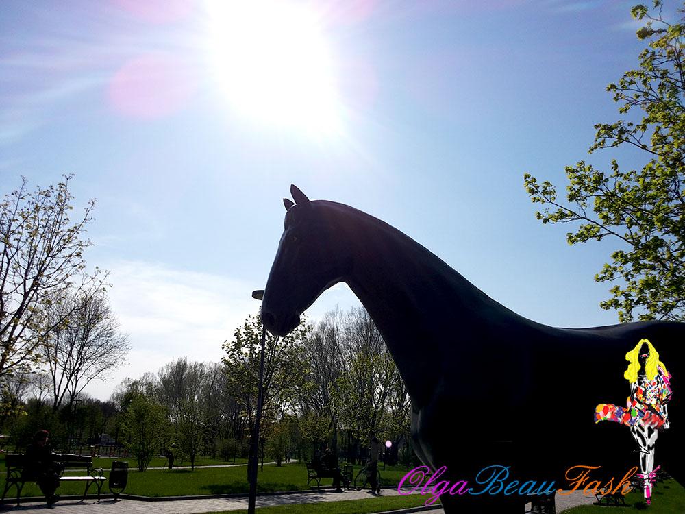 life, жизнь, моя жизнь, события, весна, лошадь, наряд дня, день из жизни, обновления