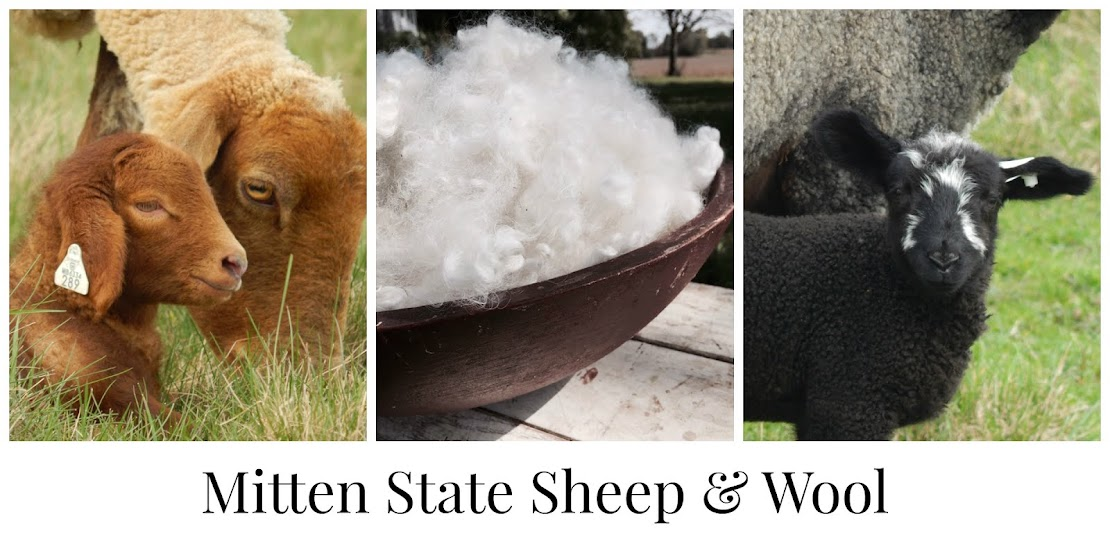 Mitten State Sheep and Wool