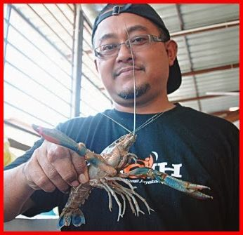 COURSE ON FARMING LOBSTERS AT HOME (AQUAPONICS METHOD)