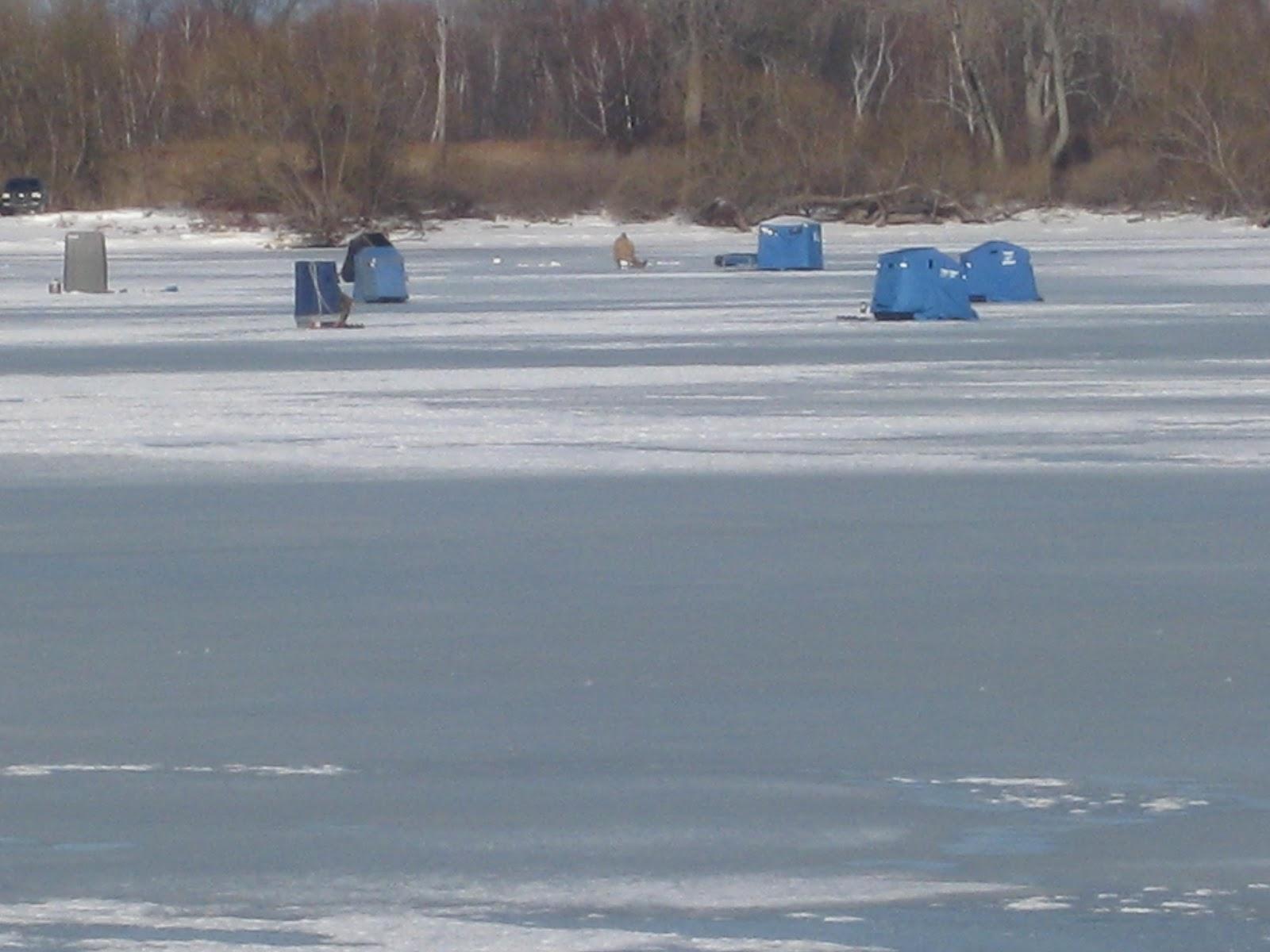 Lake erie fishing blog ice is good for fishing presque for Lake erie fishing