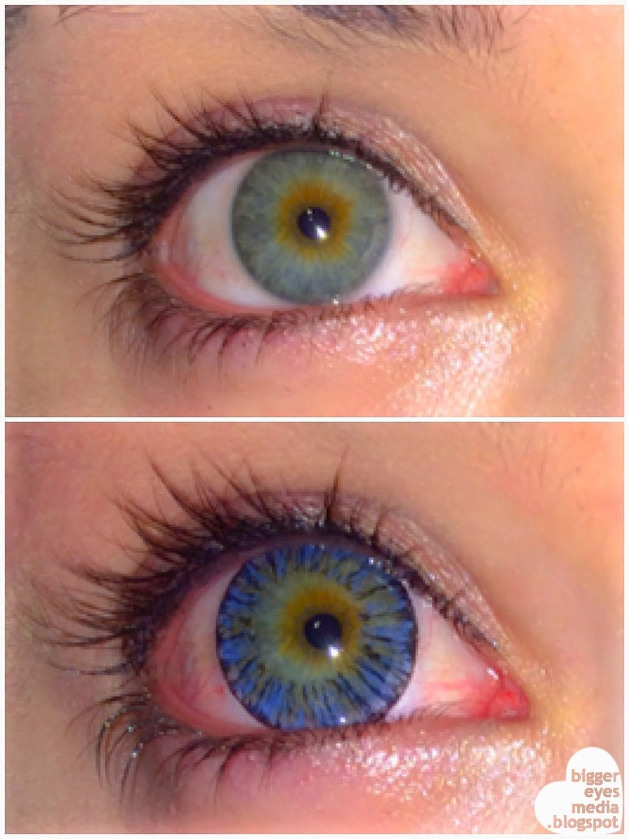 Beuberry Kitten Eyes Blue colored contacts