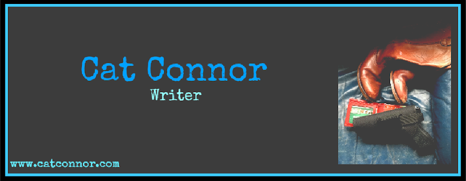 Blog of crime writer Cat Connor