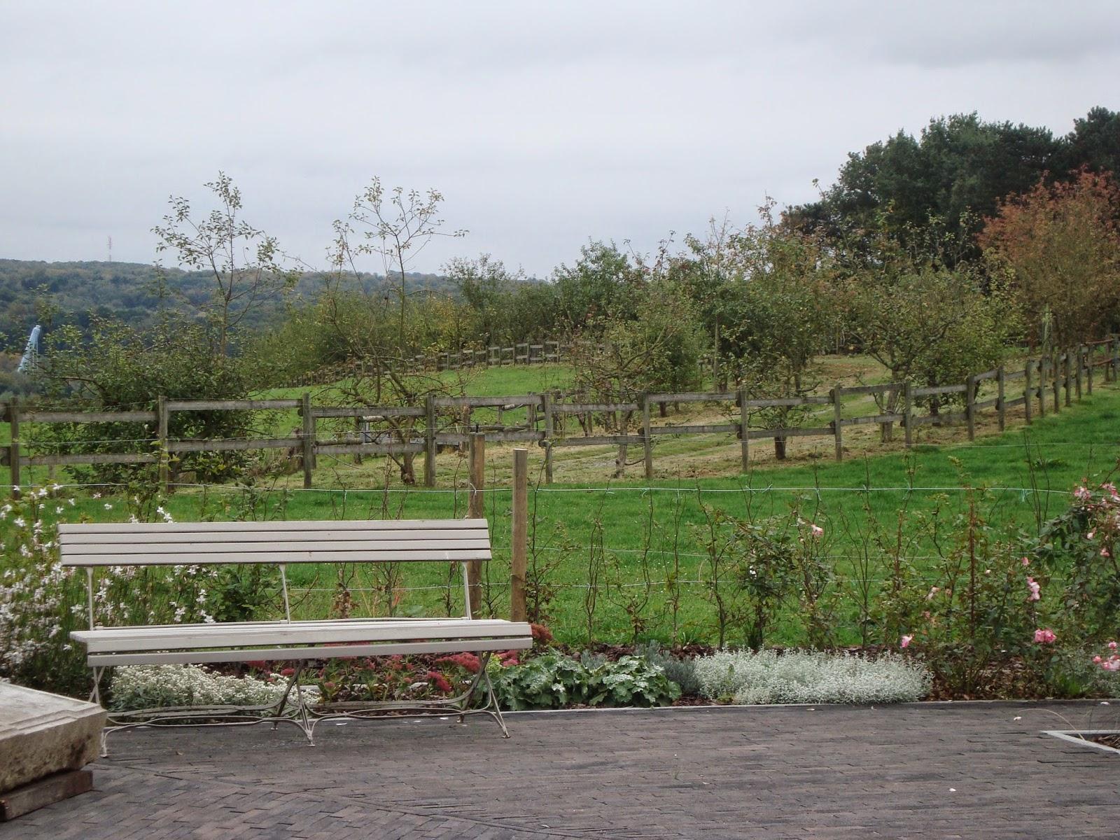 Passionn ment jardin visite d 39 une serre de raisins for Acheter une serre de jardin en belgique