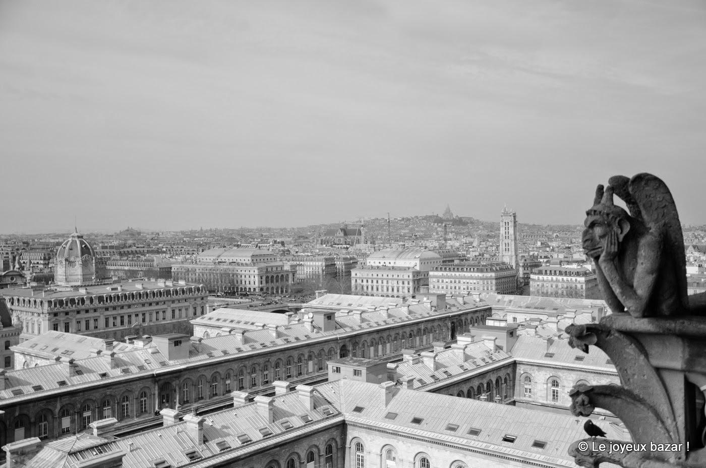 Paris vue d'en haut depuis Notre Dame
