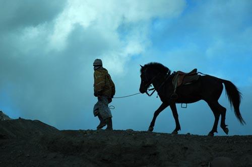 penungggang kuda bromo
