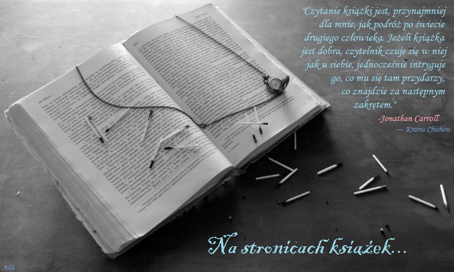 Na stronicach książek...