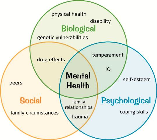 psychological factors in health Health psychology can be defined as the study of how biological, environmental, psychological and sociocultural factors influence health, healthcare and illness.