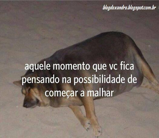putinha.png (526×457)
