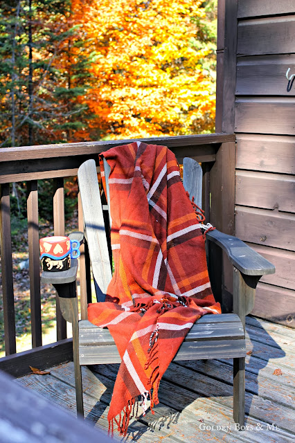 Adirondack chair plaid blanket fall foliage via www.goldenboysandme.com