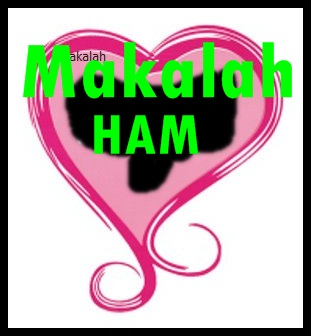 MAKALAH HAM (pelanggaran HAM yang terjadi di Mesuji)