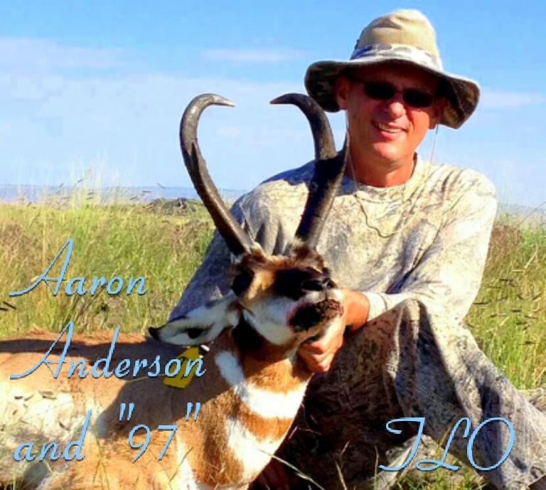 Aaron+97+2.png