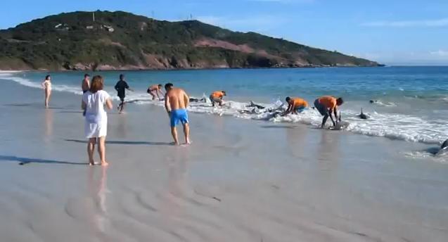 VIDEO DEL FANATICO DE RAFA NADAL QUE SE CAYO EN INDIAN WELLS