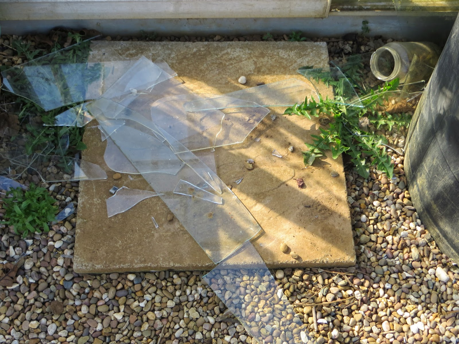 greenhouse glass broken
