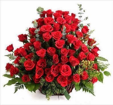 Toda mulher gosta de rosas E rosas e rosas Muitas vezes são vermelhas Mas sempre são rosas...
