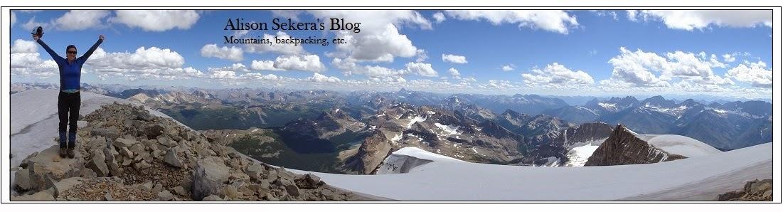 Alison Sekera's Blog