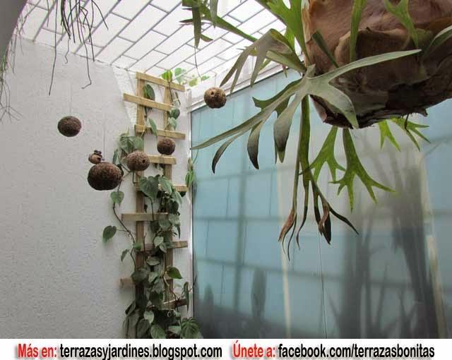 Decoraciones de jardines de invierno - Jardin de invierno ...