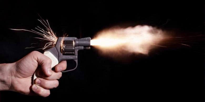 pistol-revolver