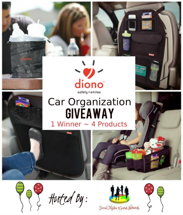 Diono Car Organization