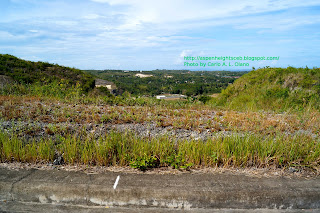 Aspen Heights Cebu view