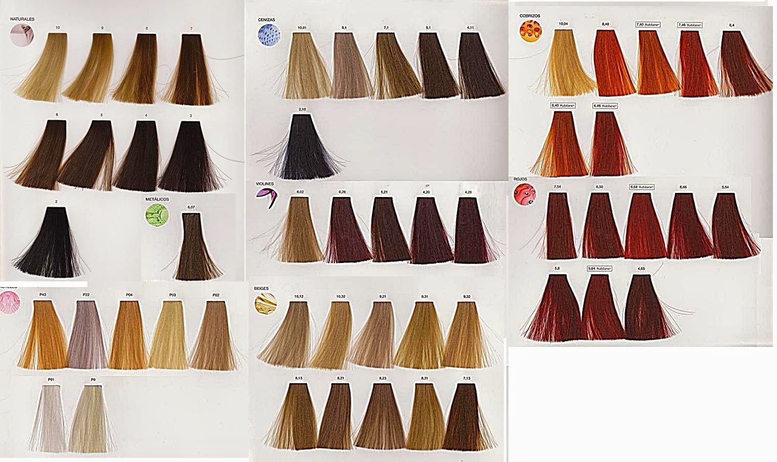 paleta de colores loreal inoa