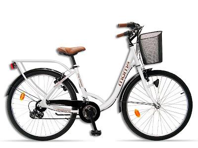 bicicleta-de-paseo