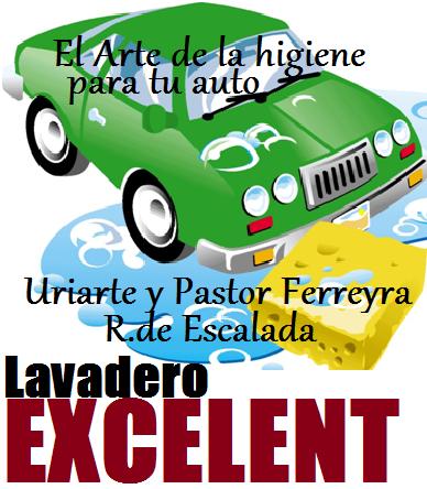PROFESIONALES DEL LAVADO
