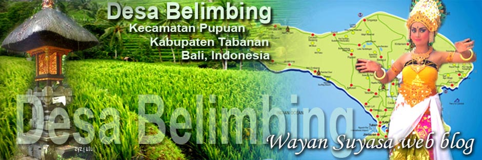 WAYAN SUYASA - web blog