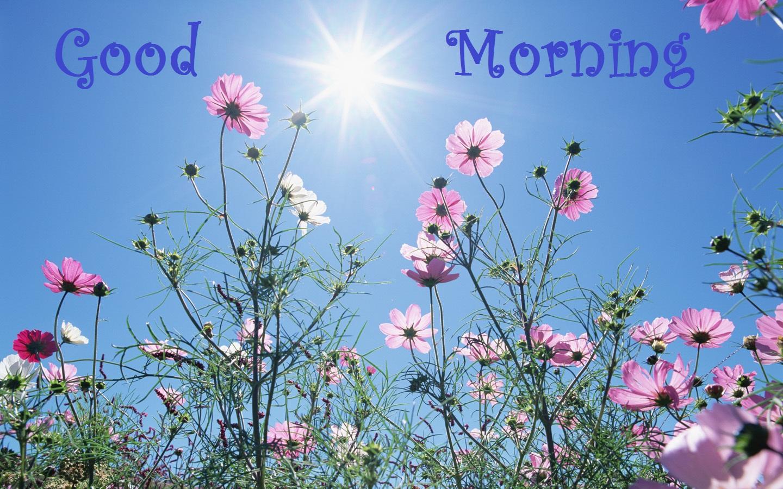 good morning urdu - photo #21
