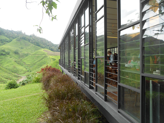 berehat di boh tea centre Aktiviti Best Jelajah Cameron Highlands