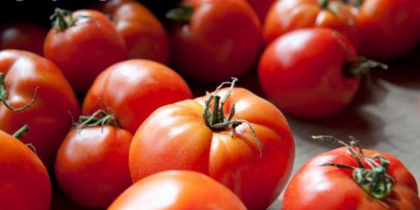 Tomat, Buah atau Sayur?