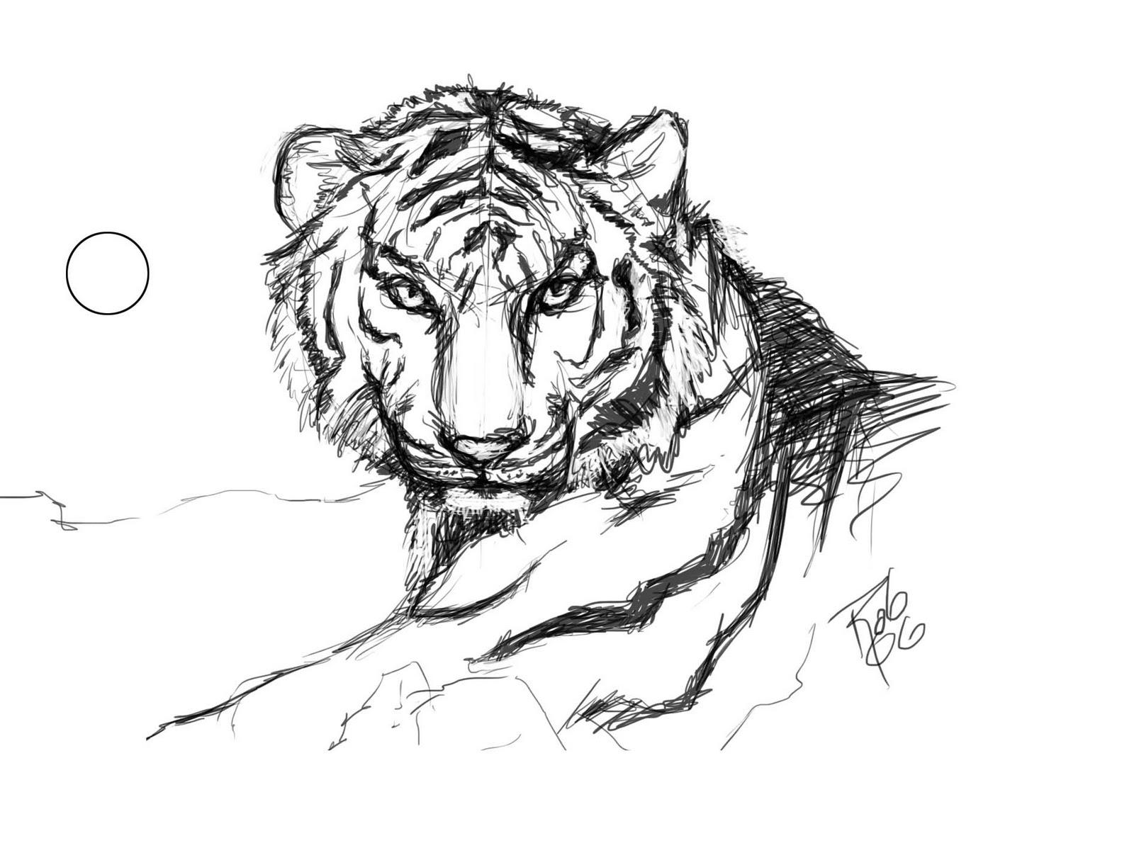 Roberto e quintero tigres for Immagini tigre da colorare