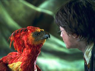 Ave Fénix. Harry Potter.