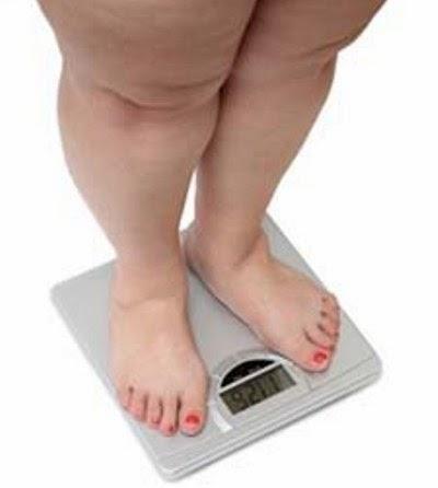 obat-obesitas-kegemukan-alami
