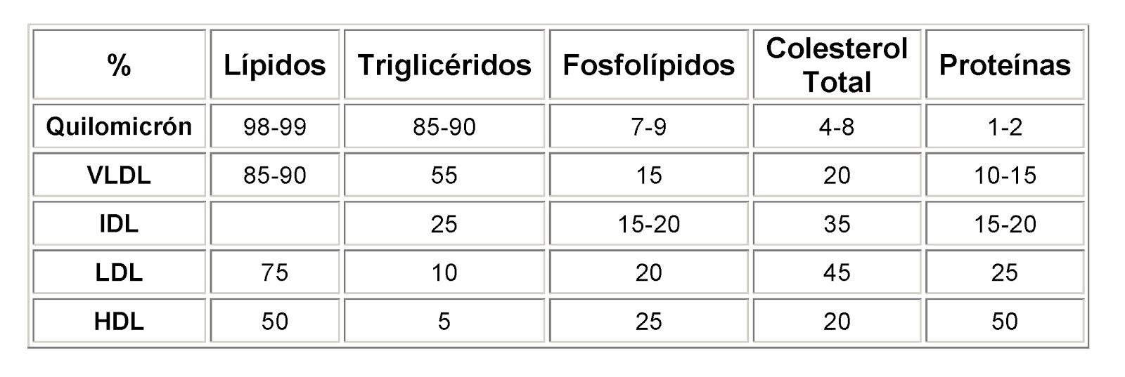 Composición en lípidos y proteínas de cada tipo de lipoproteínas