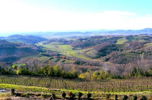 Tokaj Wine Region Historic Cultural Landscape Hungary