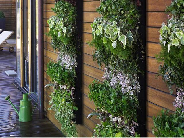 fazer iluminacao jardim:Arquiteta e Light Designer – Francine Cardoso: Jardins Verticais