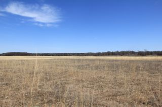 photo of Wild River State Park prairie undergoing restoration