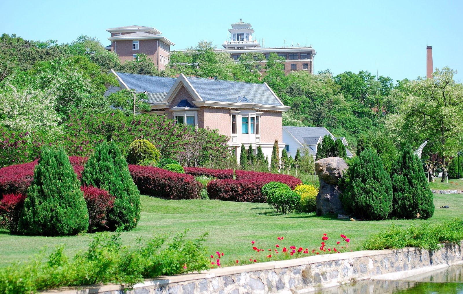 Casas y jardines dise os arquitect nicos for Imagenes de jardines de casas