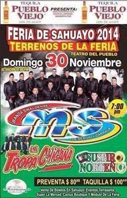 Teatro del pueblo Feria Sahuayo 2014