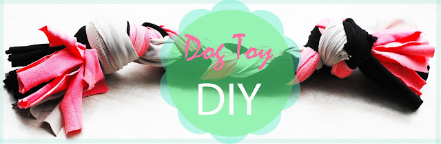 dog toy DIY