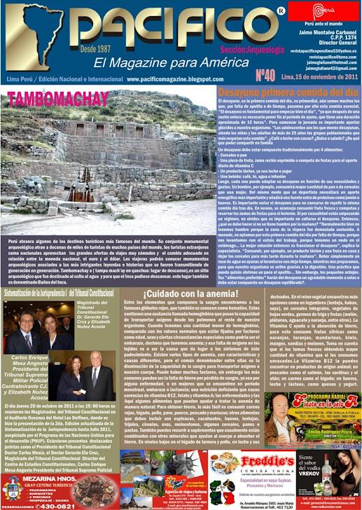 Revista Pacífico Nº 40 Arqueología